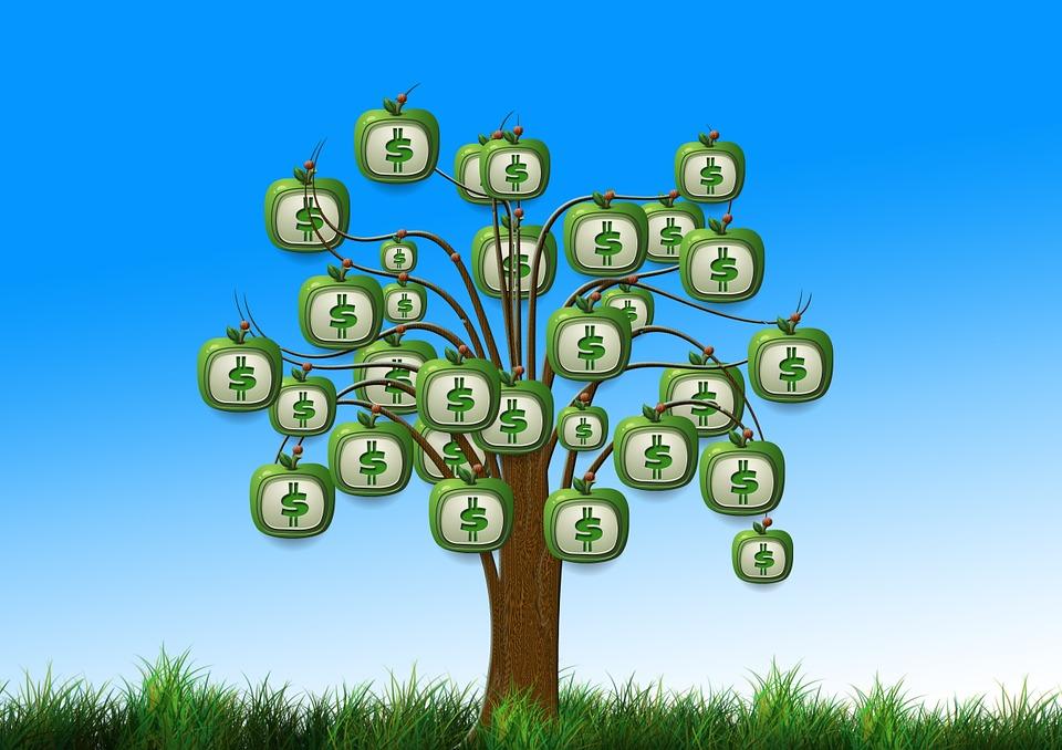 albero prestito