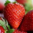 strawberries-4330211__340