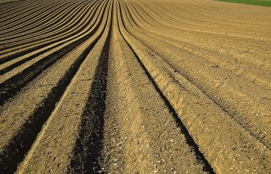 crop-1149914_960_720